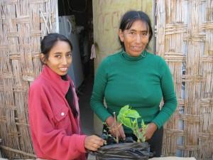 fotos proyecto Huarango 572
